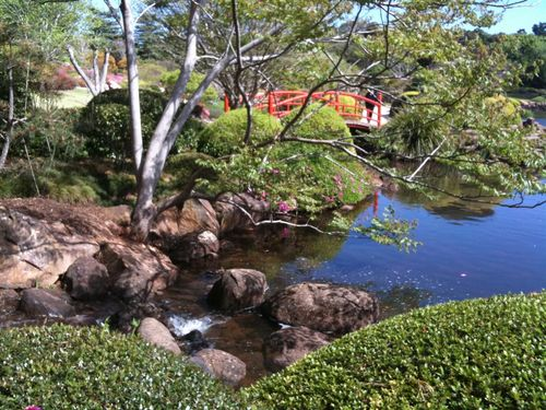 2011 Sept Toowoomba Japanese Gardens 010 (Medium)